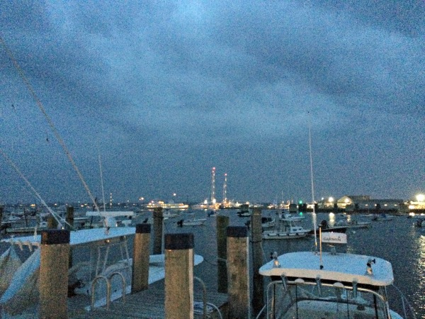 harbor--with the lights on masts of tall sailboats